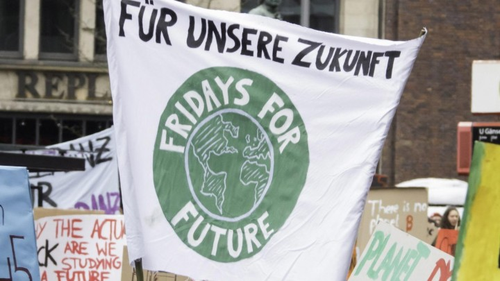 Fridays-for-Future-Plakat (picture alliance / Hinrich Bäsemann)